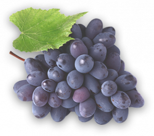 home_section0_grapes